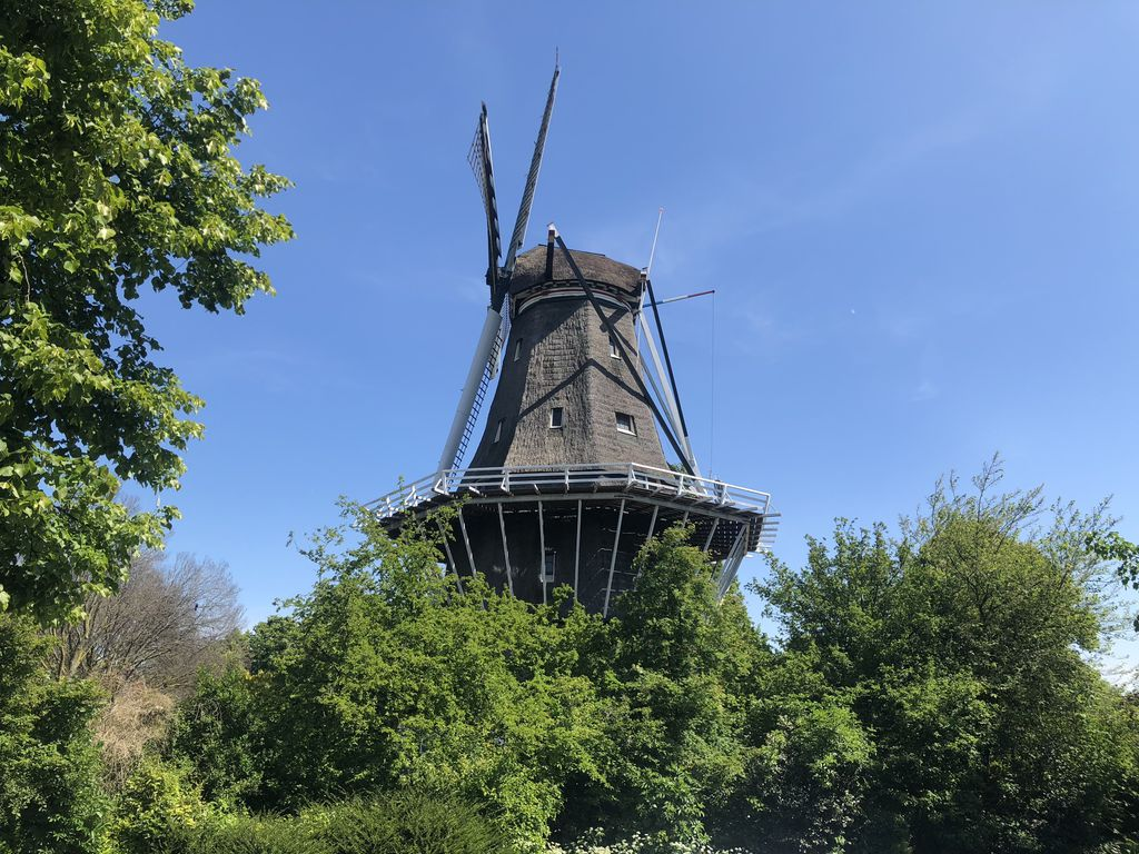 studio situated next to the old windmill